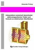 Interpolation numerisch berechneter elektromagnetischer Felder und Verluste an elektrischen Oberflächen (eBook, PDF)