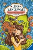 Ein Geheimnis auf Katzenpfoten / Luna Wunderwald Bd.2