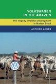 Volkswagen in the Amazon (eBook, PDF)