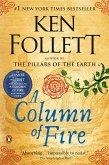 A Column of Fire (eBook, ePUB)