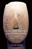 Evolving Brains, Emerging Gods (eBook, ePUB)