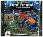 Fünf Freunde auf der Suche nach Timmy, 1 Audio-CD