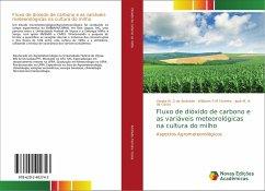 Fluxo de dióxido de carbono e as variáveis meteorológicas na cultura do milho