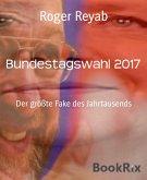 Bundestagswahl 2017 (eBook, ePUB)
