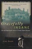 Gracefully Insane (eBook, ePUB)