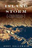 Island in a Storm (eBook, ePUB)