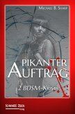 Pikanter Auftrag (eBook, ePUB)