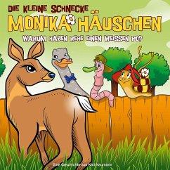 Warum haben Rehe einen weißen Po?, 1 Audio-CD / Die kleine Schnecke, Monika Häuschen, Audio-CDs Tl.50 - Naumann, Kati