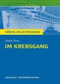 Im Krebsgang von Günter Grass. Alle erforderlichen Infos für Abitur, Matura, Klausur und Referat plus Musteraufgaben mit Lösungsansätzen. (eBook, PDF)