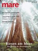 mare No. 124. Bäume