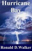 Hurricane Bay (eBook, ePUB)