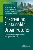 Co-creating Sustainable Urban Futures