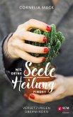 Wie deine Seele Heilung findet (eBook, ePUB)