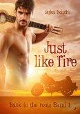 Just like fire (eBook, ePUB)