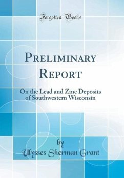 Preliminary Report: On the Lead and Zinc Deposits of Southwestern Wisconsin (Classic Reprint)