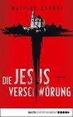 Die Jesus-Verschwörung (eBook, ePUB)