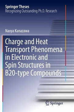 Charge and Heat Transport Phenomena in Electronic and Spin Structures in B20-type Compounds - Kanazawa, Naoya