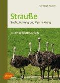 Strauße (eBook, PDF)