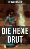 Die Hexe Drut (eBook, ePUB)