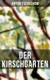 Der Kirschgarten (eBook, ePUB)