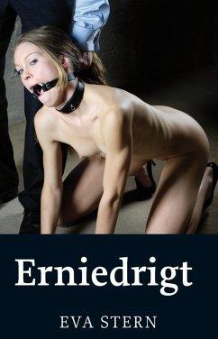 Erniedrigt (eBook, ePUB) - Stern, Eva