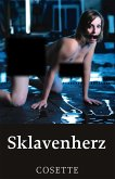 Sklavenherz (eBook, ePUB)
