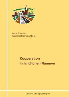 Kooperation in ländlichen Räumen (eBook, PDF)
