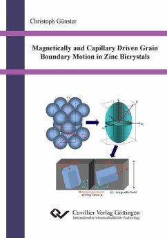 Magnetically and Capillary Driven Grain Boundary Motion in Zinc Bicrystals (eBook, PDF)