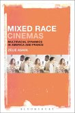 Mixed Race Cinemas (eBook, PDF)