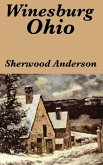 an analysis of the characters from the novel winesburg ohio by sherwood anderson This curriculum unit introduces students to sherwood anderson and his use of the grotesque in winesburg, ohio, while focusing their analysis on the central character george and his relationships with family members and town residents.