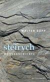 steirych (eBook, ePUB)