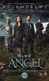 Dark Angel (eBook, ePUB)