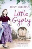 Little Gypsy (eBook, ePUB)