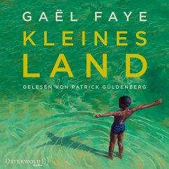 Kleines Land (MP3-Download) - Faye, Gaël