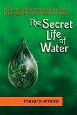 The Secret Life of Water (eBook, ePUB)