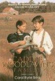 Caddie Woodlawn's Family (eBook, ePUB)