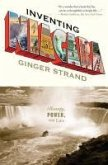 Inventing Niagara (eBook, ePUB)
