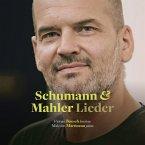 Liederkreis/Lieder Eines Fahrenden Gesellen/+