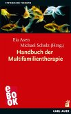 Handbuch der Multifamilientherapie (eBook, ePUB)