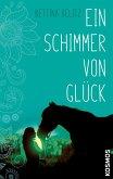 Ein Schimmer von Glück (eBook, ePUB)