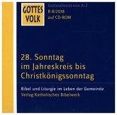 28. Sonntag im Jahreskreis bis Christkönigssonntag, 1 CD-ROM / Gottes Volk, Lesejahr B 2018 CD.08
