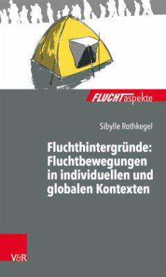 Fluchtaspekte: Fluchthintergründe: Fluchtbewegungen in individuellen und globalen Kontexten - Rothkegel, Sibylle