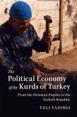 Political Economy of the Kurds of Turkey (eBook, ePUB)