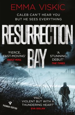 Resurrection Bay - Viskic, Emma