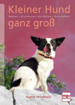 Kleiner Hund ganz groß (Mängelexemplar) - Strodtbeck, Sophie