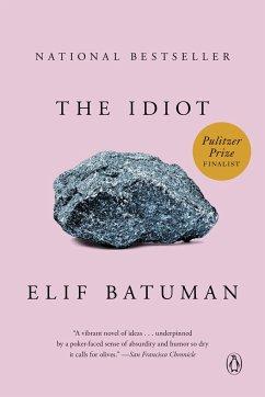 The Idiot - Batuman, Elif