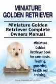 Miniature Golden Retriever. Miniature Golden Retriever Complete Owners Manual. Miniature Golden Retriever book for care, costs, feeding, grooming, health and training.