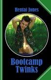 Bootcamp Twinks (eBook, ePUB)