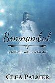 Somnambul (eBook, ePUB)