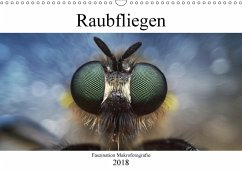 Faszination Makrofotografie: Raubfliegen (Wandk...